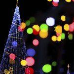 クリスマスツリーの由来は?オーナメントの意味が素敵すぎ!